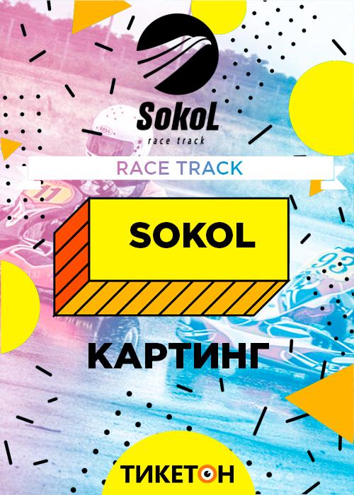 Картинг Sokol