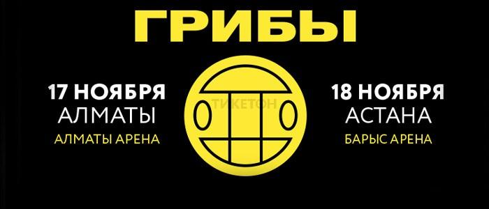 """Группа """"Грибы"""" в Казахстане"""