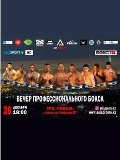 professionalnogo-boksa-v-almaty