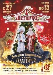 Новогоднее представление в цирке «Шапито»