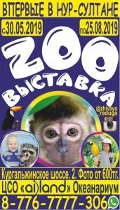 Zoo Выставка «Живая Радуга»