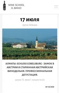 «Schloss gobelsburg - замок в Австрии и старинная Австрийская винодельня. Профессиональная дегустация»