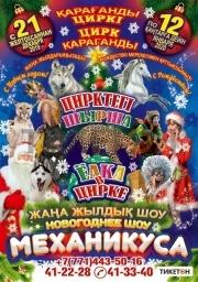 Новогоднее шоу Механикус