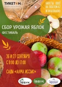 Фестиваль «Сбор урожая яблок»