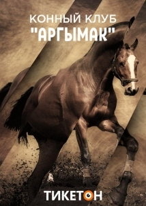 Фотосессия с лошадьми для влюбленных. Конный клуб «Аргымак»