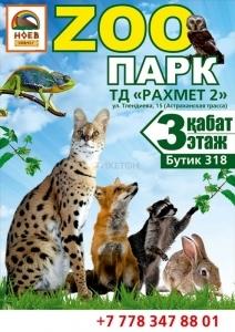 Контактный зоопарк в Астане
