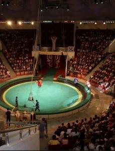 Цирк Кызылорды