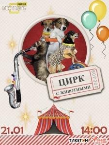 Цирк с животными в Квадрате