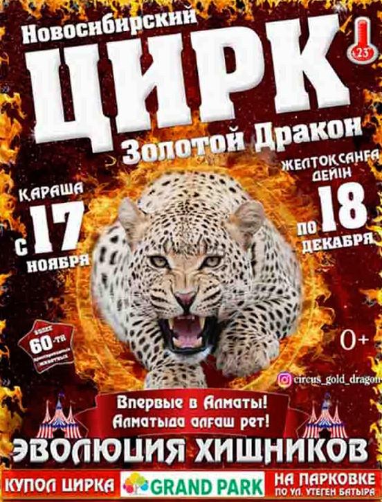Картинки по запросу Новосибирский цирк «Золотой Дракон»