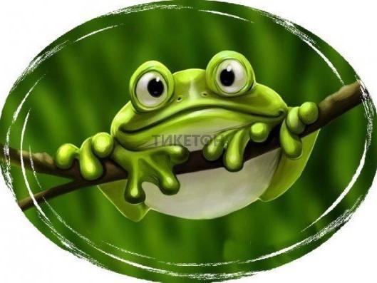 Большие приключения маленького лягушонка
