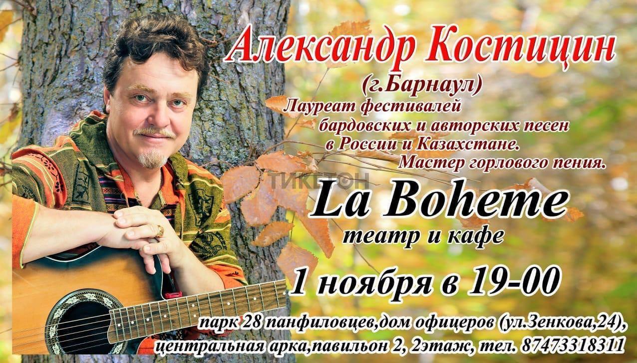 Концерт Александра Костицина