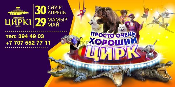 Просто очень хороший цирк в Алматы