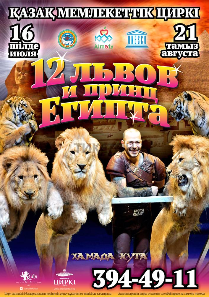 Цирк 12 львов