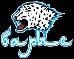 "Логотип ХК ""Барыс"""